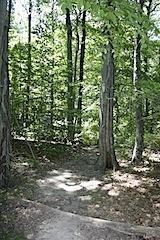 Squantum Woods, East Providence, RI